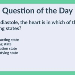 HTQOD008: The heart, during diastole (Anatomy and Physiology, Science)